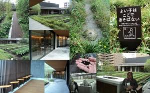 Kebun sayuran, cafe, restaurant & meeting room di lantai 3